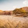 Парк Тимна (Негев): Русло пересохшей реки