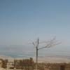 Крепость Массада. Вид на Мертвое Море.