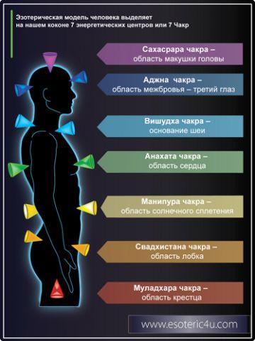 Энергетическая модель человека. Понятие о Чакрах