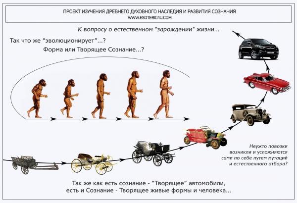 """Так что же """"эволюционирует""""? Форма или творящее Сознание?"""
