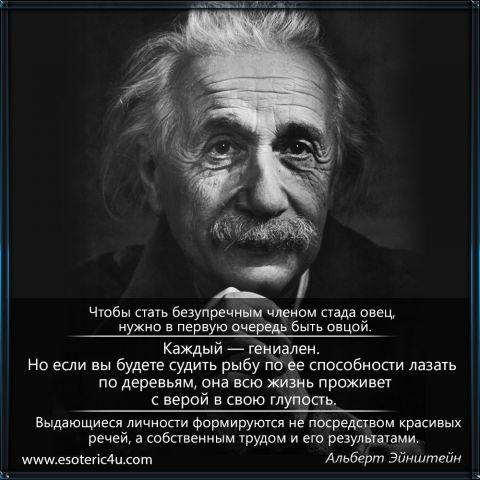 Эйнштейн 2. Выдающиеся личности формируются не посредством красивых речей...